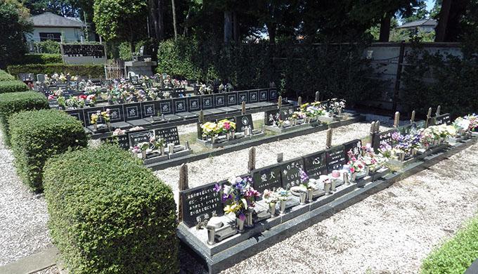 写真:墓地